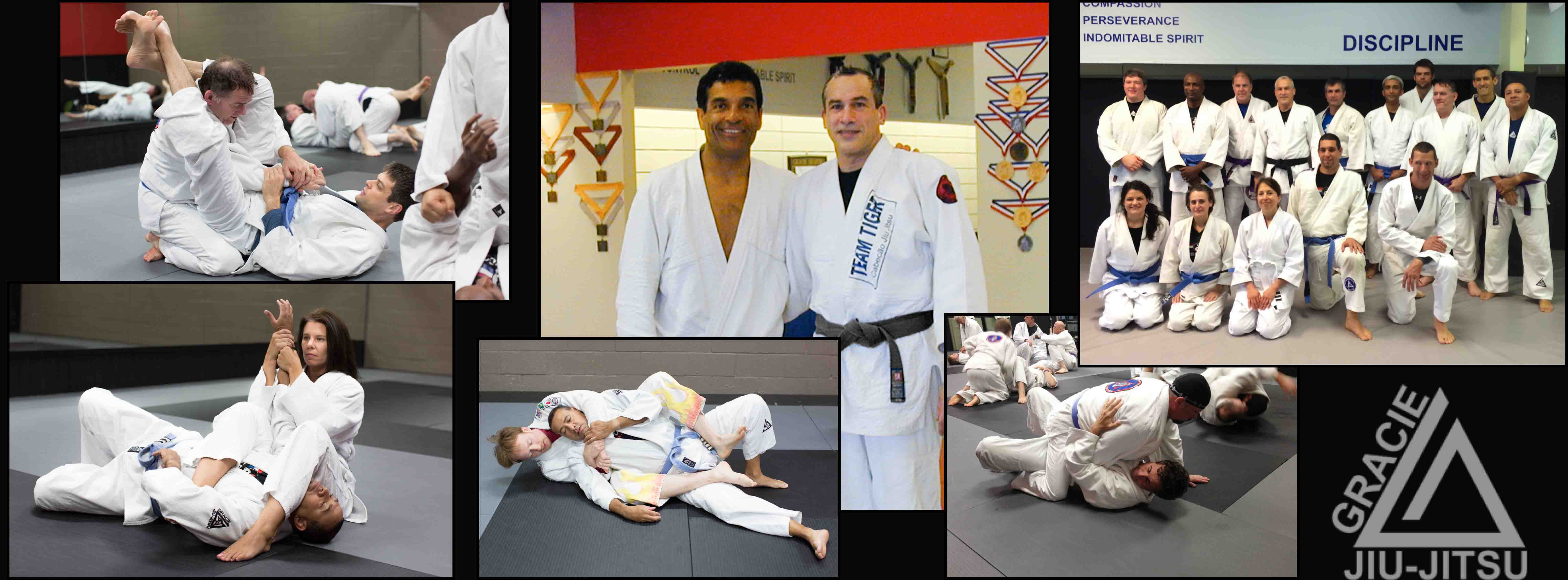 Adult Gracie Brazilian Jiu-Jitsu Classes