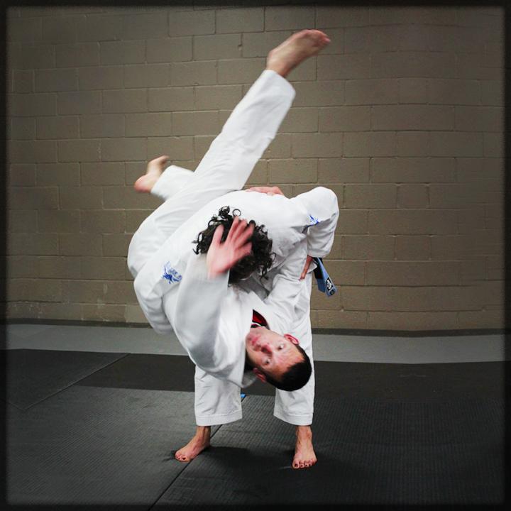 Gracie Jiu-jitsu – Imperatori Family Martial Arts of Atlanta